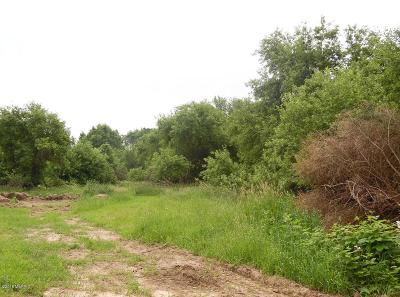 Kent County Residential Lots & Land For Sale: 8992 Alaska Avenue SE