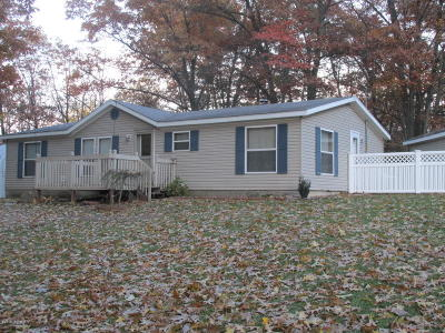 Branch County Single Family Home For Sale: 507 Mallard Drive