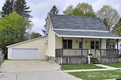 Belding Single Family Home For Sale: 321 Lewis Street