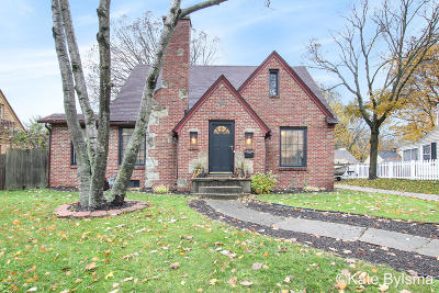 Grand Rapids Single Family Home For Sale: 1109 Kenesaw Drive SE