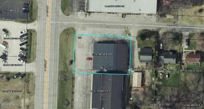 Niles MI Commercial For Sale: $295,000