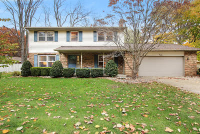 Holland, West Olive Single Family Home For Sale: 791 Pleasant Ridge Drive