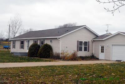 Hart MI Single Family Home For Sale: $104,900