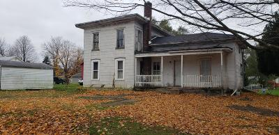 Ionia County Single Family Home For Sale: 8273 Front Street