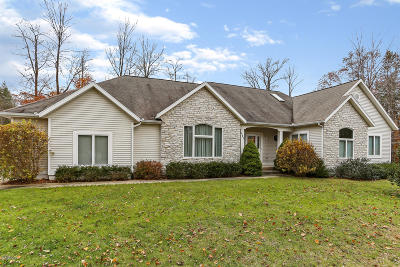 Muskegon County, Newaygo County, Oceana County, Ottawa County Single Family Home For Sale: 643 Ranch Drive