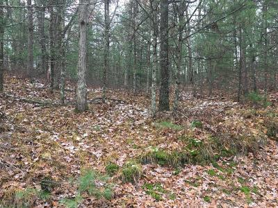 Oceana County Residential Lots & Land For Sale: Lot 15-17 32-34 Helena/Paulina