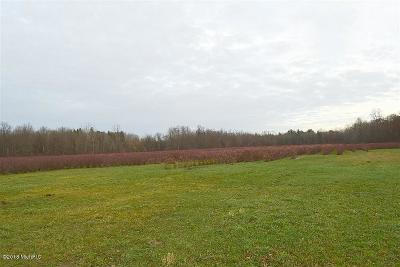 Berrien County, Cass County, Van Buren County Residential Lots & Land For Sale: 39845 78th Street #Farm #3