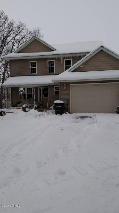 Ionia County Single Family Home For Sale: 4658 Westbrook Rd Road