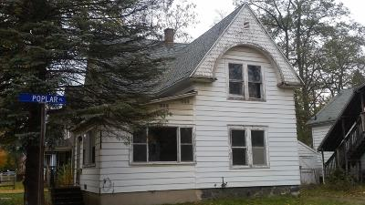 Kalamazoo Single Family Home For Sale: 1223 E Stockbridge Avenue