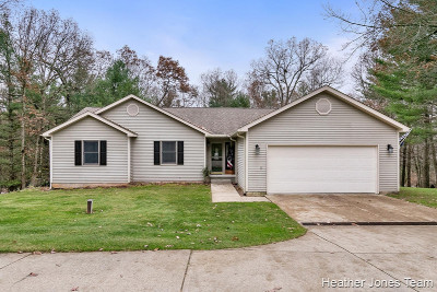 Single Family Home For Sale: 11259 S Bailey Valley Drive NE