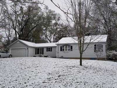 Niles Single Family Home For Sale: 1723 Niles Buchanan Road