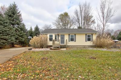 Belding Single Family Home For Sale: 602 Crooks Street