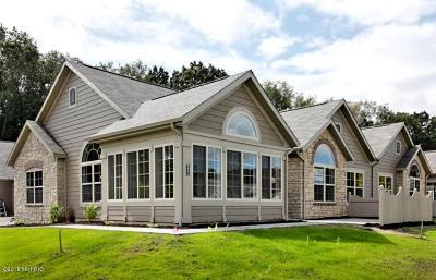 Kalamazoo Condo/Townhouse For Sale: 2621 Bluestone Circle