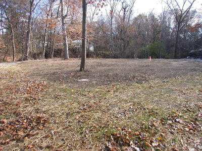 New Buffalo Residential Lots & Land For Sale: 123 S Thompson Street