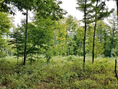 Benzie County Residential Lots & Land For Sale: Morro Drive