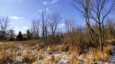 Residential Lots & Land For Sale: Vl N M 51
