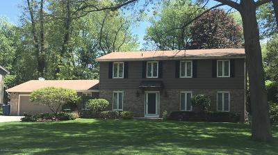 Portage Single Family Home For Sale: 6847 Trotwood Street