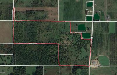Berrien County Residential Lots & Land For Sale: Friday Road