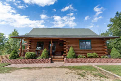 Delton Single Family Home For Sale: 13684 Stuck Road