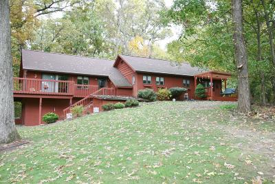 White Pigeon Single Family Home For Sale: 20550 Hillandale Road