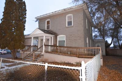 Ionia Single Family Home For Sale: 439 W Washington Street