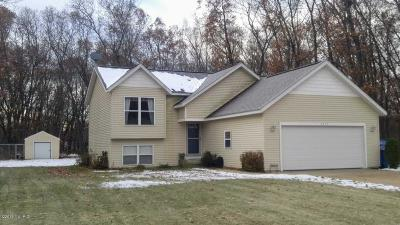 Muskegon Single Family Home For Sale: 2459 Chestnut Trail