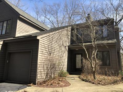Berrien County, Branch County, Calhoun County, Cass County, Hillsdale County, Jackson County, Kalamazoo County, St. Joseph County, Van Buren County Condo/Townhouse For Sale: 1501 W Water Street #66