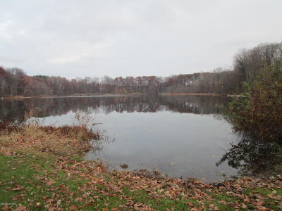 Berrien County Residential Lots & Land For Sale: 0000 Singer Lake Road