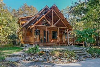Glenn MI Single Family Home For Sale: $389,000