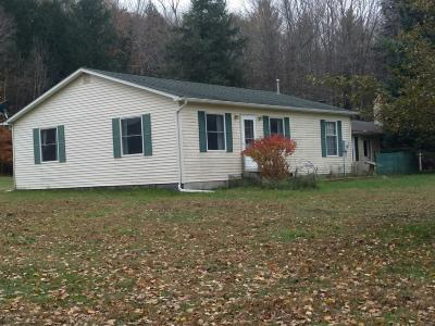 Reed City MI Single Family Home For Sale: $225,000