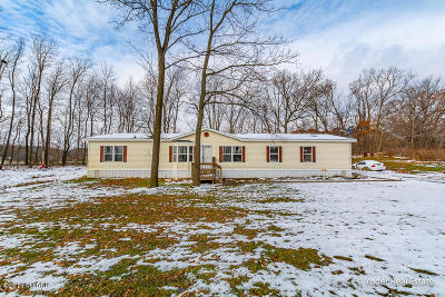 Lowell Single Family Home For Sale: 6396 Kyser Road