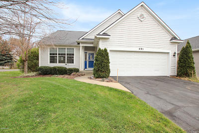 Holland, West Olive, Zeeland Single Family Home For Sale: 491 Hunters Run Circle
