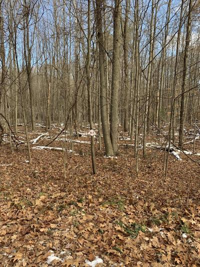 Newaygo Residential Lots & Land For Sale: 505 E 96th Street