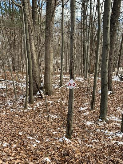 Newaygo County Residential Lots & Land For Sale: 9530 Benjamin Drive