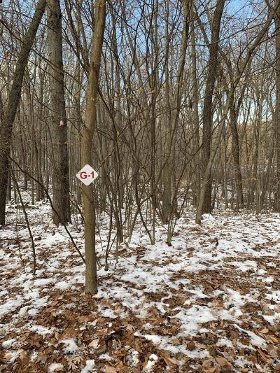 Newaygo County Residential Lots & Land For Sale: 9475 Benjamin Drive