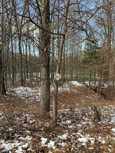 Newaygo County Residential Lots & Land For Sale: 9439 Benjamin Drive