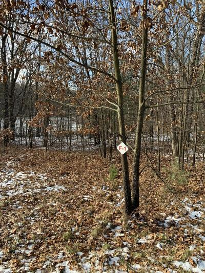 Newaygo County Residential Lots & Land For Sale: 9425 Benjamin Drive