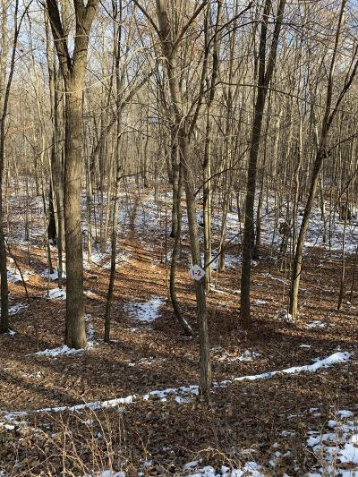 Newaygo County Residential Lots & Land For Sale: 9370 S Hannah Lane