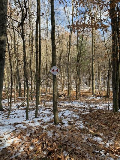 Newaygo County Residential Lots & Land For Sale: 9310 Benjamin Drive