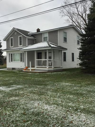 Holland, West Olive Single Family Home For Sale: 12310 New Holland Street