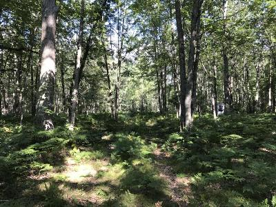Benzie County, Charlevoix County, Clare County, Emmet County, Grand Traverse County, Kalkaska County, Lake County, Leelanau County, Manistee County, Mason County, Missaukee County, Osceola County, Roscommon County, Wexford County Residential Lots & Land For Sale: Warfield Road