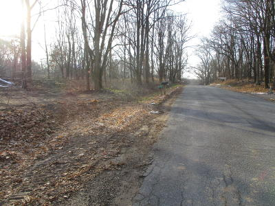 Greenville Residential Lots & Land For Sale: 11072-4d Podunk Avenue