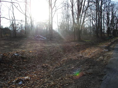 Greenville Residential Lots & Land For Sale: 11072-3c Podunk Avenue