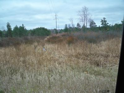 Mason County Residential Lots & Land For Sale: 1833 W Us 10
