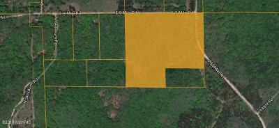 Antrim County, Benzie County, Charlevoix County, Clare County, Emmet County, Grand Traverse County, Kalkaska County, Lake County, Leelanau County, Manistee County, Mason County, Missaukee County, Osceola County, Roscommon County, Wexford County Residential Lots & Land For Sale: 8941 N Saddler Road