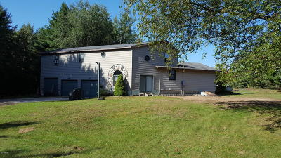 Ludington Single Family Home For Sale: 5456 Bertha Lane