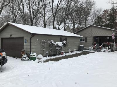 Newaygo Single Family Home For Sale: 6363 E Dave Street