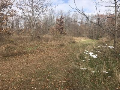 Barry County Residential Lots & Land For Sale: 3411 West Shore