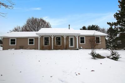 Single Family Home For Sale: 3055 Deli Drive NE