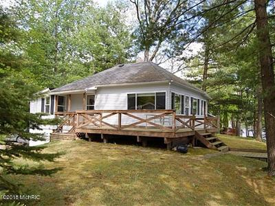 Mecosta MI Single Family Home For Sale: $249,900